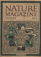 Nature Vol. 2 No. 6 Magazine