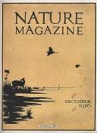 Nature Vol. VIII No. 6 Magazine