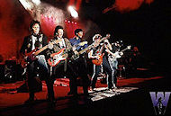 The Doobie Brothers Fine Art Print