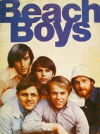 Beach Boys Book