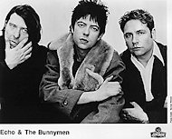 Echo & the Bunnymen Promo Print