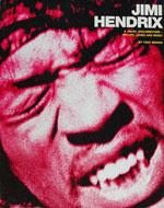 Jimi Hendrix A Visual Documentary Book