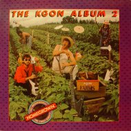 "The Storm Vinyl 12"" (Used)"