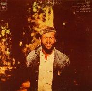 "Taj Mahal Vinyl 12"" (Used)"