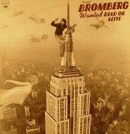 "David Bromberg Vinyl 12"" (Used)"