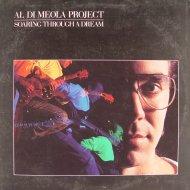 "Al Di Meola Project Vinyl 12"" (Used)"