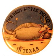 The Best Little Dillo In Texas Pin
