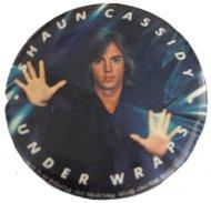 Shaun Cassidy Pin