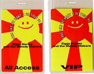 Ziggy Marley & the Melody Makers Laminate