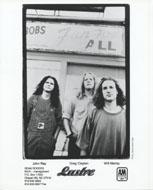 Lustre Promo Print
