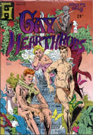 Gay Hearthrobs #1 Comic Book