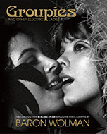Groupies and Other Electric Ladies Book