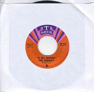 "The Vandals Vinyl 7"" (Used)"