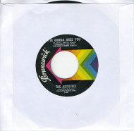 """The Artistics Vinyl 7"""" (Used)"""