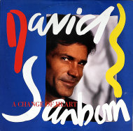"David Sanborn Vinyl 12"" (Used)"