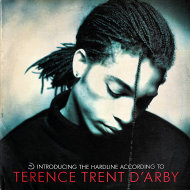 "Terence Trent D'Arby Vinyl 12"" (Used)"