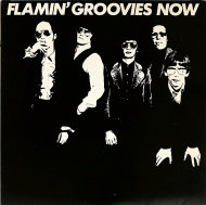 "The Flamin' Groovies Vinyl 12"" (Used)"