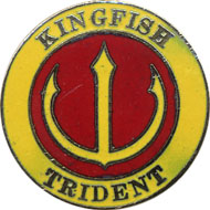 Kingfish Pin