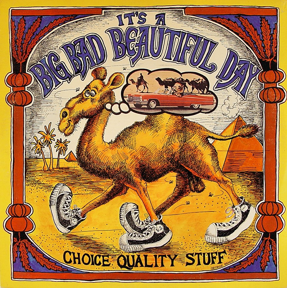 """It's a Beautiful Day Vinyl 12"""" (Used)"""
