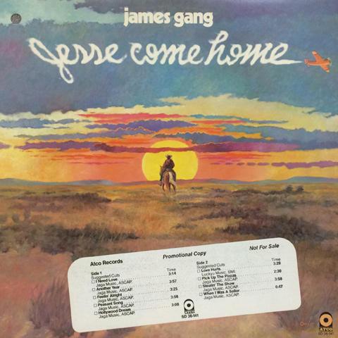 "Jesse Gang Vinyl 12"" (Used)"