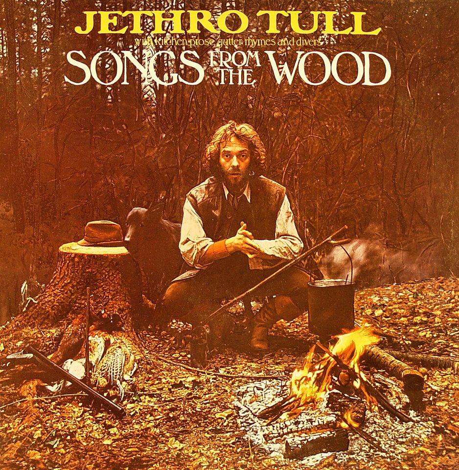 """Jethro Tull Vinyl 12"""" (Used)"""