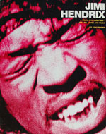 Jimi Hendrix A Visual Documentary Book
