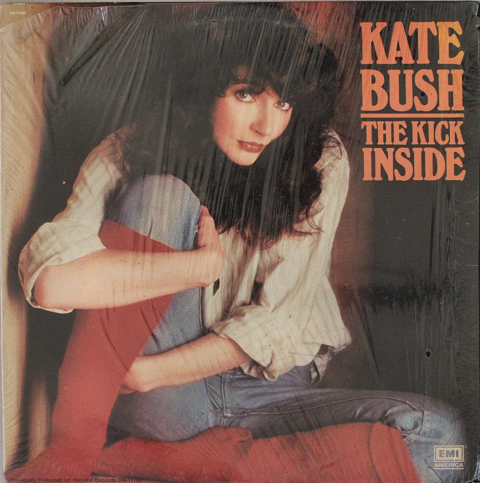 "Kate Bush Vinyl 12"" (Used)"