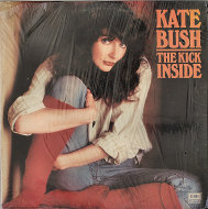 "Kate Bush Vinyl 12"" (Used)"