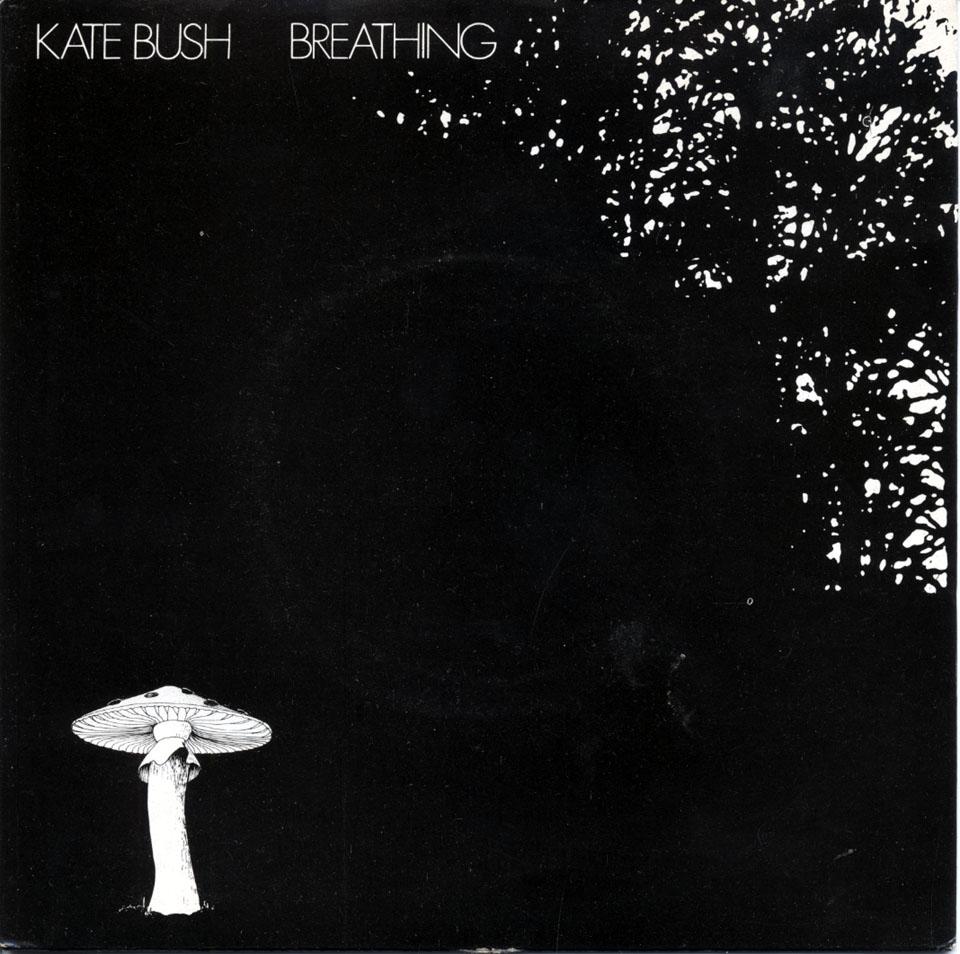 "Kate Bush Vinyl 7"" (Used)"