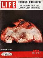 LIFE Magazine April 19, 1954 Magazine