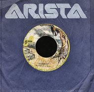 "Link Wray Vinyl 7"" (Used)"