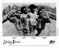 Living Colour Promo Print