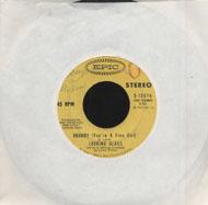"""Looking Glass Vinyl 7"""" (Used)"""