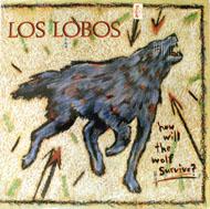"""Los Lobos Vinyl 12"""" (Used)"""