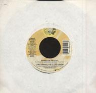 "Luke Featuring 2 Live Crew Vinyl 7"" (Used)"