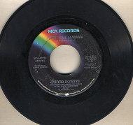 """Lynyrd Skynyrd Vinyl 7"""" (Used)"""