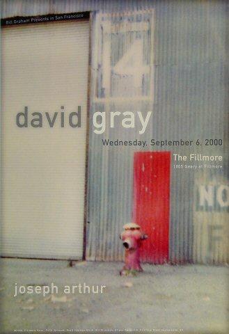 David Gray Poster