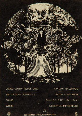 James Cotton Blues Band Postcard