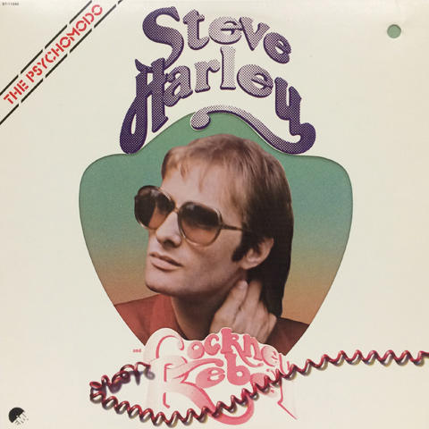 "Steve Hartley Vinyl 12"""