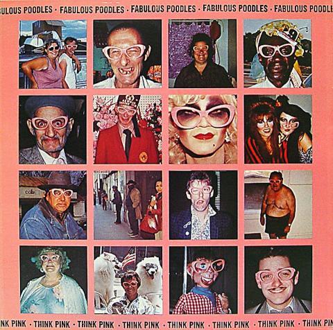 """The Fabulous Poodles Vinyl 12"""""""