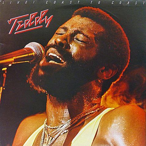 "Teddy Vinyl 12"""