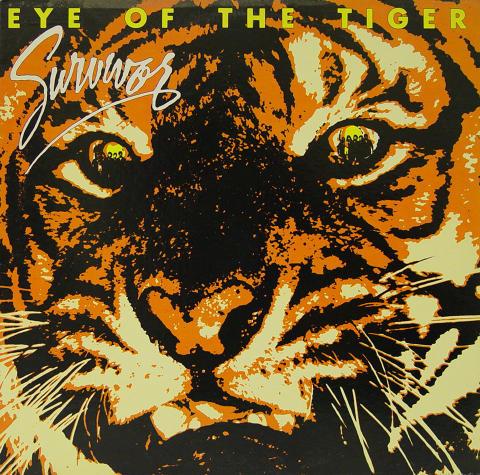 """Survivor Vinyl 12"""""""