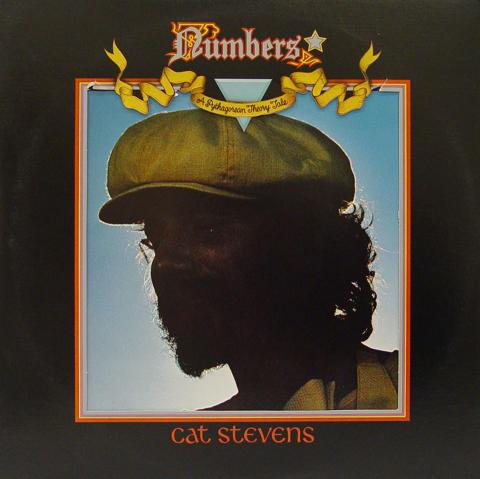 """Cat Stevens Vinyl 12"""""""
