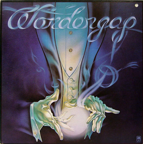 """Wondergap Vinyl 12"""""""
