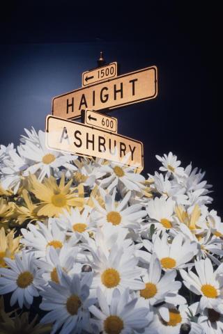 Haight Ashbury Street Sign Fine Art Print