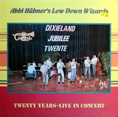 """Abbi Hubner's Low Down Wizards Vinyl 12"""""""