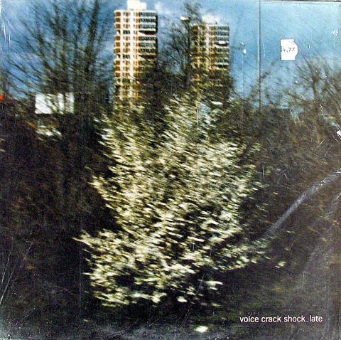 "Voice Crack Vinyl 12"""