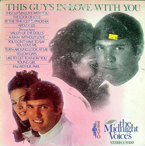 """The Midnight Voices Vinyl 12"""""""
