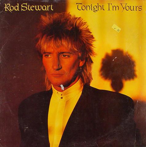 "Rod Stewart Vinyl 12"" (Used)"
