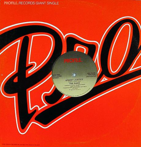 "The Rake Vinyl 12"""